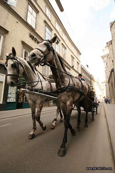 Riding in a horse-carriage in Vienna.